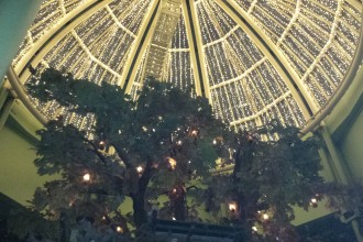 The Botanist dome