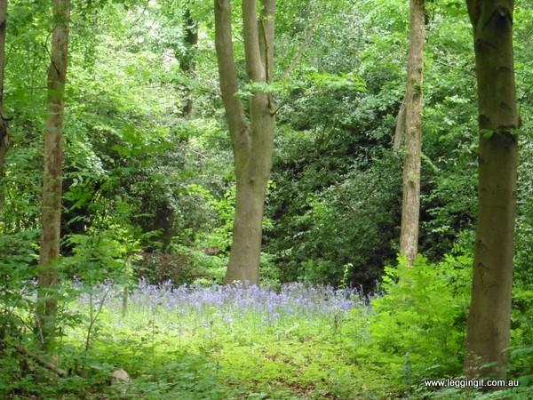 Spring destination England